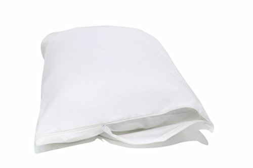 5 best pillow protectors for allergies fighting dustmites for Best dust mite pillow protectors