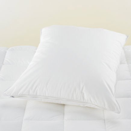 Pristine Pillow cover