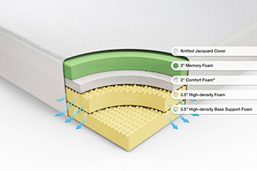 Can Dust Mites Live In Memory Foam Mattresses And Pillows