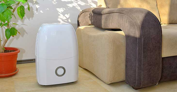 Best Dehumidifiers for Dust Mites and Allergies