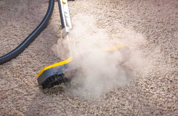 Best steam cleaners for killing dust mites