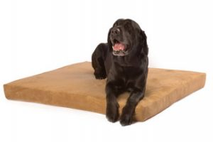 Smokey Dog Co. Therapeutic Pet Bed